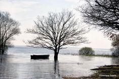 Photo de l'album Lac de Grand lieu - GooglePhotos