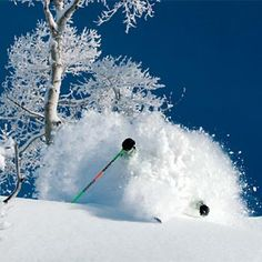 Steamboat's champagne powder #Skiing -- Find articles on adventure travel, outdoor pursuits, and extreme sports at http://adventurebods.com