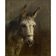 Rosa Bonheur Portrait of a Donkey 39.5 X 32 in (100.33 X 81.28 cm) Medium:  Oil on canvas Signed