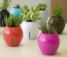 grobal, karim rashid self-watering planters