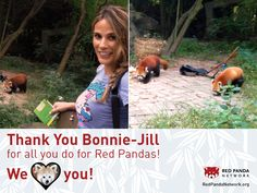 Bonnie-Jill Laflin visited the Chengdu Research Center and Giant Panda Breeding Center on behalf of Red Panda Network in the Fall of 2013! She introduced the concept of International Red Panda Day to our friends at the center and checked on the red pandas at the center. Thanks for all you do, Bonnie-Jill!
