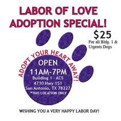 Enjoy special adoption rates on Monday, September 7 for Labor Day! ONLY for dogs at Bldg. 1 at Animal Care Services (on Highway 151).