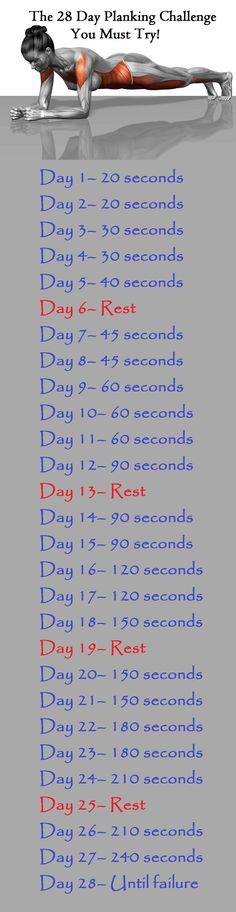 The 28-day Plank Challenge trains the body for strength and endurance, and the slow progression will eventually lead to fantastic effects!
