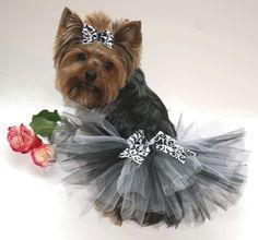 elegant black and white damask dog tutu and matching hair bow