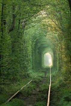 Tunnel of Love - Ukraine It is believed that if couples who are truly in love hold hands and cross the tunnel, their wishes will come true.