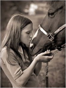 Examples and Details about Equestrian and Equine Portrait Photography for Horse Lovers. Farm Photography, Animal Photography, Portrait Photography, Horse Photos, Horse Pictures, My Horse, Horses, Foto Shoot, Horse Farms