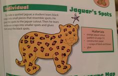 Leopard craft