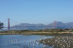 Beautiful day in SF
