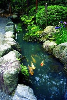 Gorgeous Backyard Fish Pond Design Ideas - A backyard pond can add a great deal of charm and appeal to your garden, but good planning is essential. So if you want a pond, here's some advice tha. Fish Ponds Backyard, Backyard Water Feature, Backyard Ideas, Garden Ponds, Koi Ponds, Pond Ideas, Fish Garden, Modern Backyard, Garden Planters