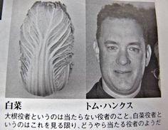 toronei:    完全に一致な画像集ぴろり速報ちゃんねる