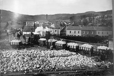 Belfast City, Road Construction, Ireland Travel, Northern Ireland, Locomotive, Dolores Park, Coast, History, Places