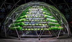 trippy bio-dome!