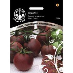 TOMAATTI 'Black Cherry' Black Cherry on kirsikkatomaattilajike, jolla on tummat, purppuranpunaiset hedelmät. Sen hedelmäliha on tummanpunaista, mehukasta ja makeaa. Lajike tuottaa paljon hedelmiä läpi kesän.