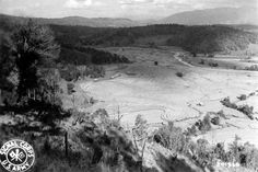 WWII view from mountain range down into the terraced paddies of Burma.  Photographer Unknown