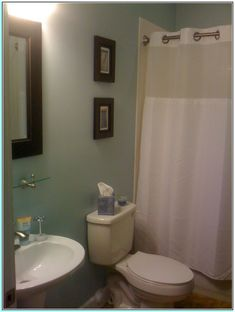 Paint Colors For Bathroom Without Window