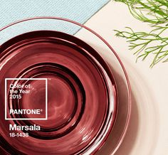 "The Pantone Color of the Year 2015 is the ""Marsala"". Much like the fortified wine that gives its name, this tasteful hue embodies the satisfying richness of a fulfilling meal while its grounding red-brown roots emanate a sophisticated, natural earthiness. This hearty, yet stylish tone is fantastic and palatial but watch out - does not fit everyone! C.Styling"