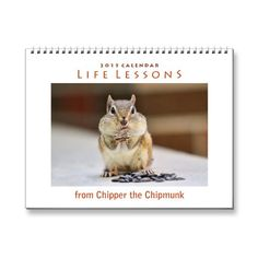 SOLD! Life Lessons from Chipper the Chipmunk Calendar by FunNaturePhotography. #chipmunks #calendar #WildlifeCalendar #FunnyCalendar http://www.zazzle.com/funnaturephotography*