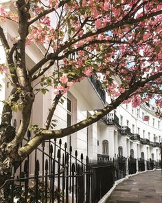Hazy spring day in London Places Around The World, Around The Worlds, Spring Cafe, Spring Scenery, London Townhouse, Dappled Light, City Vibe, Spring Aesthetic, London Life