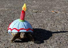Accogliente di tartaruga candela compleanno  su di MossyTortoise