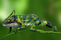 Illusion: Ceci n'est pas un cameleon (Bodypainting) Johannes Stötter Illusion Kunst, Illusion Art, Illusion Paintings, Johannes Stötter, Camouflage Art, Charles Darwin, Foto Art, Nature Animals, Wild Animals