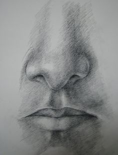 Google Image Result for http://www.deviantart.com/download/144801835/Nose_and_mouth_study_by_sam0o0.jpg