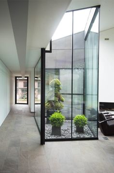 interior courtyard with gravel and plantings
