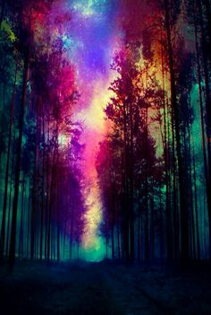 Magical Forest Canvas Print - Wallpaper World Galaxy Wallpaper, Cool Wallpaper, Nature Wallpaper, Phone Backgrounds, Wallpaper Backgrounds, Wallpaper Desktop, Worship Backgrounds, Hd Desktop, Magical Forest