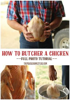 How to Butcher a Chicken. My life would be so much easier if I had the guts to butcher my roosters instead of try to find someone to buy them.