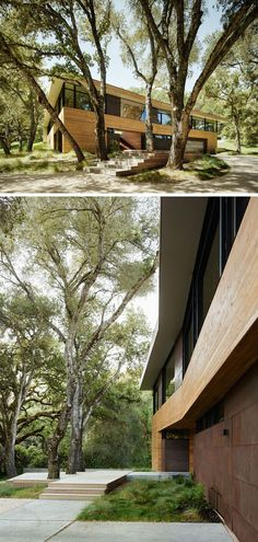 Sagan Piechota Architecture have designed this contemporary home nestled between the trees of Carmel Valley in California.