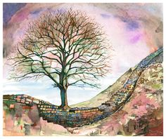 ARTFINDER: Robin Hood's Tree by David Holliday - This image features Sycamore Gap. Made famous by the 1991 film, Robin Hood Prince of Thieves, giclee' print.  $330