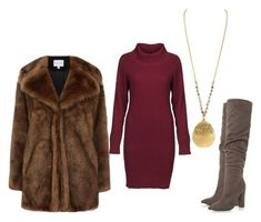 Fuzzy Coat by levcollection on Polyvore featuring polyvore, fashion, style, DUBARRY, Warehouse, clothing, necklace, coat and longnecklace