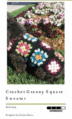 granny square dog coat on http://www.knitting-n-crochet.com/basic-granny-square-pattern.html designed by Sharon Mann.