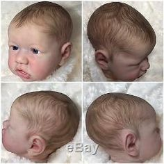 Hobbies For Couples, Hobbies To Try, Bb Reborn, Reborn Baby Dolls, Doll Painting, Hair Painting, Doll Head, Doll Face, Drawing Hair Braid