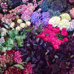 After listening to some lovely music at the Union Chapel it's almost mandatory to stroll past @danskflowers to look at their seasonal display. This time I couldn't resist. Expect many autumnal bouquet shots over the weekend. If no one else is going to buy you flowers you've just got to buy them for yourself.