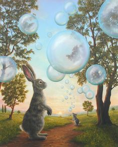 Robert Bissell ~ rabbit with bubbles