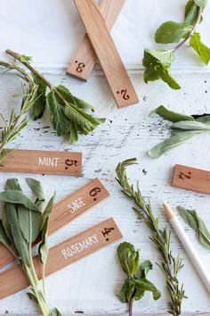 herbs for your market garden