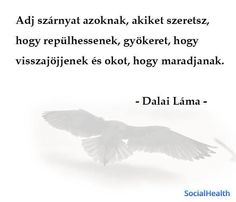 Give me wings- Adj szárnyat Give me wings - Wild Waters, Cool Words, Favorite Quotes, Quotations, Give It To Me, Life Quotes, Wings, Infinite, Type 3