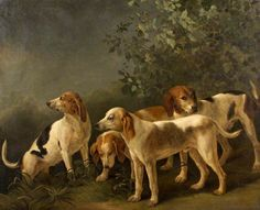 Harriers (Four Hounds) by Jean-Baptiste Oudry or T. B. Hackert Oil on canvas, 122 x 149 cm Collection: Merthyr Tydfil Museums Service