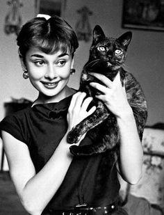 Audrey Hepburn & her beautiful black cat.
