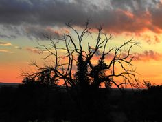 Sunset Photograph..Wall Art by Trish Helsel Photography by TFAS