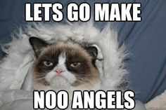 Grumpy Cat Snow Angel maker