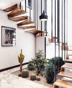 Minimal Interior Design Inspiration 180 UltraLinx floating stairs with living desert plants Home Deco, Design Exterior, Interior And Exterior, Interior Design Inspiration, Home Interior Design, Design Ideas, Diy Interior, Home Stairs Design, Stair Design