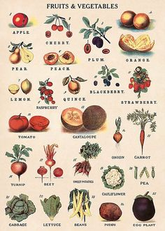 This fruits and vegetables guide will add vintage charm to gift wrapped packages and crafts, and will look lovely framed as wall art for a kitchen or living space. By Cavallini & Co.Please note: Given the delicate nature of fine paper, all flat Cheap Kitchen, Kitchen Art, Kitchen Ideas, Kitchen Inspiration, Kitchen Decor, Fruit And Veg, Fruits And Vegetables, Fresco, Vegetable Chart