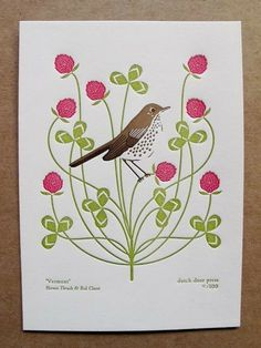 vermont (from birds and blooms of the 50 states)