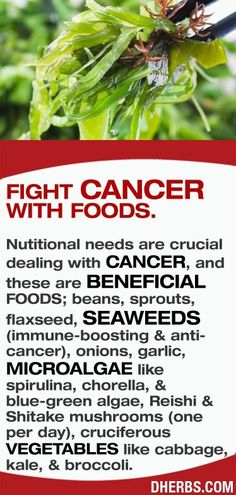Fighting cancer with food
