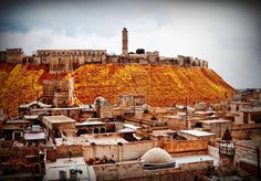 Aleppo Citadel by Romia Rose on 500px