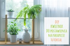 DIY wooden plant holder - instructions // DIY drewniany kwietnik