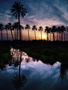 العراق الحبيب