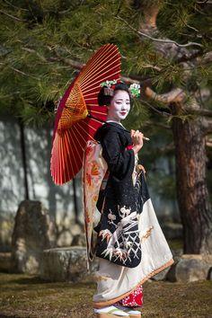 The entiere pic of the gorgeous snow kimono of maiko Mamefuji. (Source)