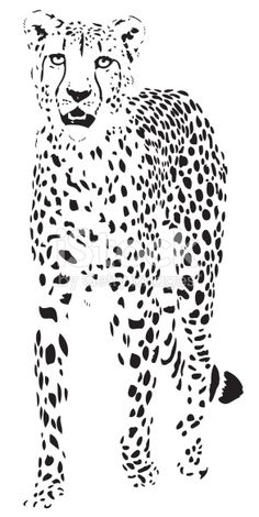 beautiful cheetah portrait illustration in black lines